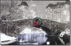 DBA Christmas Card 2010_front_s